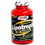 Lipotropic Fat Burner - 200 caps