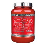 100% Whey Protein Professional LS - 920 gr