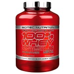 100% Whey Protein Professional LS - 2350 gr