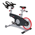 GEH-ALLXX-02 + GECLCD-ALLXX-02 - Lifecycle GX Group Exercise Bike Base + Console