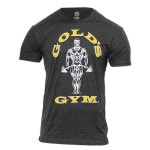 GGTS-002 Camiseta Gold Gym Muscle Joe Charcoal Marl